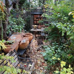 素焼き蜂の棚が・・・