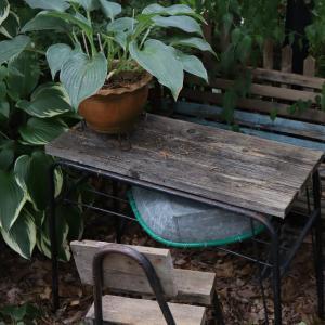 ひなびたテーブルとギボウシの関係は・・・