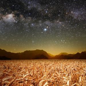 【宇宙のネタバレ】2021年の秋分が特別な理由ー本当の創造の始まりー