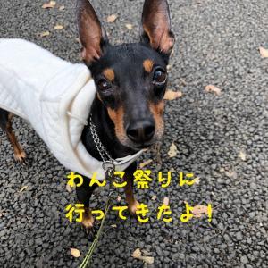 駒沢公園わんこ祭り2019