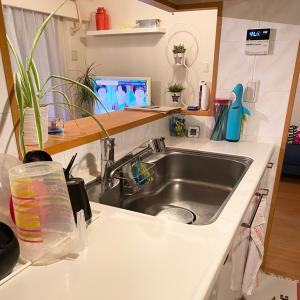 キッチン洗い桶問題、解決しました☆