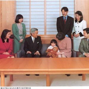 日本一強い女ー皇嗣妃殿下の肖像20