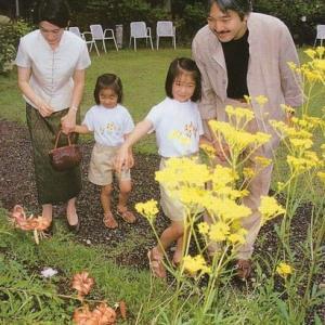 日本一強い女ー皇嗣妃殿下の肖像 30