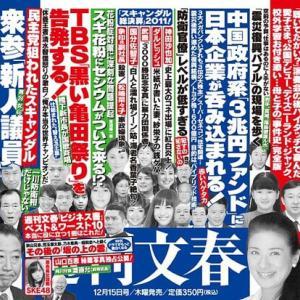日本一運のいい女 雅子皇后の肖像 101