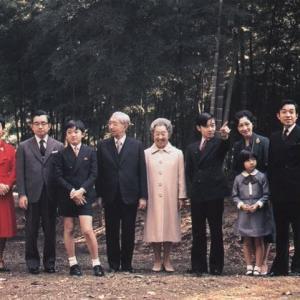 聖女か悪女か美智子上皇后の肖像  29