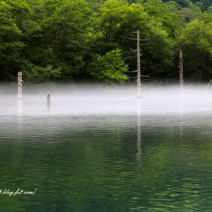 朝靄立つ湖面