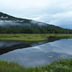 池塘のある光景