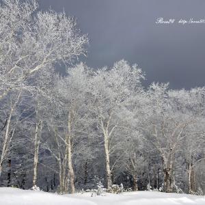 雪化粧 北海道十勝