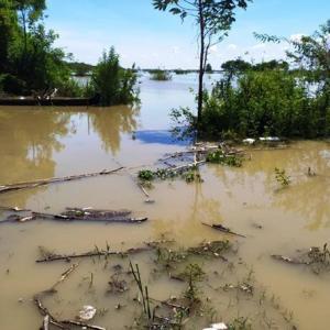 エヤワディ川が洪水の危機に