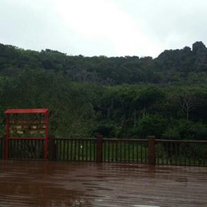 雨の大石林山④(スピリチュアルガイドツアー)