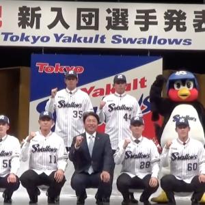 東京ヤクルトスワローズ 新入団選手発表会