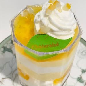 【シャトレーゼ】 ケーキ&アイスクリーム