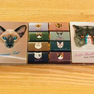 【カルディ】 ネコ 猫 ねこ キャットチョコレート