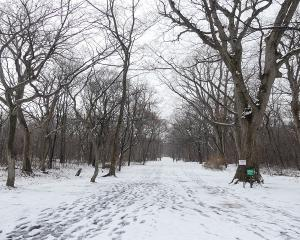 今日の青葉公園(2019/12/14)