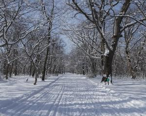 今日の青葉公園(2020/01/26)