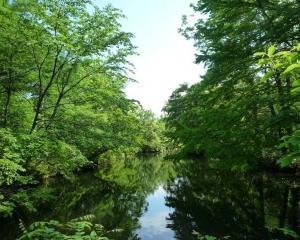 今日の林東公園(2021/06/13)