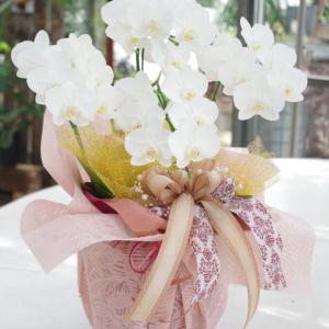 お花屋さんにオーダー頂ける花音のラッピング見せます&魅せますの巻‼