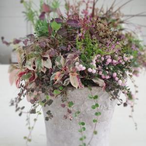 秋色で季節感をプラス♪人気のくすみピンクで大人ナチュラルを楽しもうの巻!!