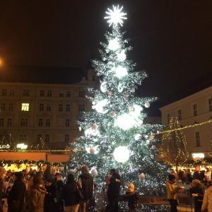 11月26~27日でチェコのブルノに行っていきました。