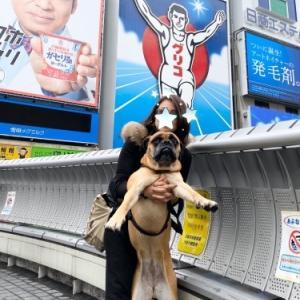 大阪観光♫