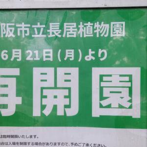 長居植物園が明日6月21日から再開園