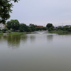 万代池は曇り時々小雨