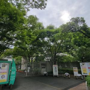今日も曇り空 の長居植物園