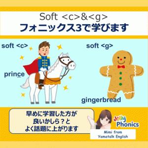 Soft <c>とsoft <g>:プリンセ&ギンガー