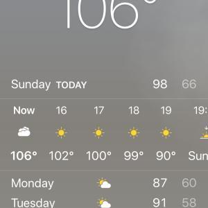 異常な暑さと素麺のビデオ