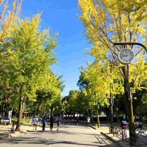 秋晴れのなか気持ちよく大阪城公園から中之島往復ラン! 2020.10.25