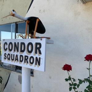 コンドール・スコードロン ~ 正式なパイロットになれた