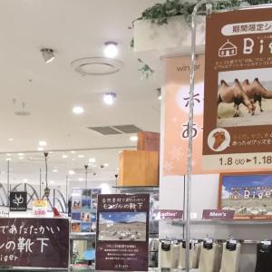 20190110/海老名マルイに期間限定出店中!1月8日~1月18日迄