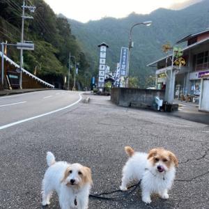 モジャこのシルバーウィーク♫     その3 奈良県の旅