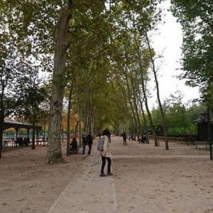 フランス パリ リュクサンブール公園 16