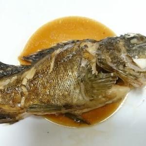 かさご 魚