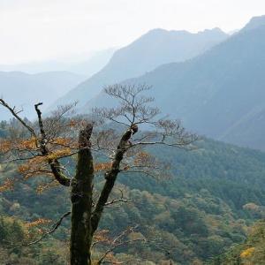 秋の自然 四国の屋根・自由旅