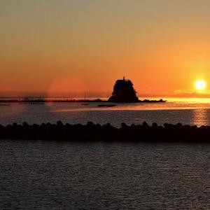 晴天で暖かい日は 高知城ヨロヨロサンポ