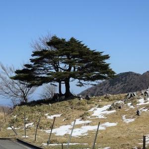 四国カルスト 天狗高原の風と空気・高知城の自然