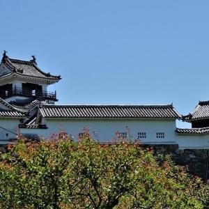 「コロナ」と生活・自然のなかで・・・高知城 鏡川・大陸の秋