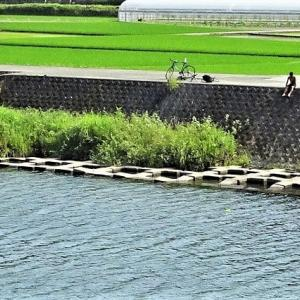 あの青空の向こうで・鏡川と高知城・ルアンパバーンの旧正月