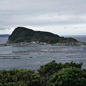 海風と川風・高知城 サクラの季節・鏡川