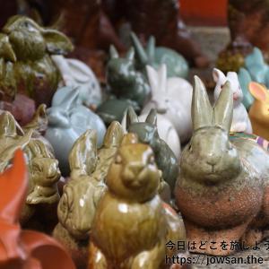 和歌山の淡嶋神社としらす丼へ約6年ぶりに再訪問散策ぶらり旅