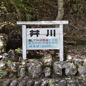 平成最後の旅は「大井川鐵道の井川線南アルプスあぷとライン」へ再び散策ぶらり旅