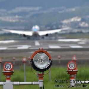 千里川土手へ飛行機の離着陸をTAMRON18-400mm高倍率ズームレンズを使って散策ぶらり旅