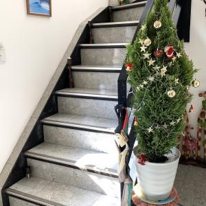 玄関ホールのクリスマス!