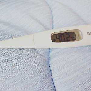 発熱の記録