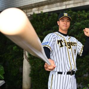 佐藤輝明(6月)打率.348(69-23) 6本 ops1.083