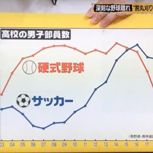 【悲報】ここ数年の野球部員数の減少、ガチで洒落にならないレベルになる