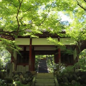 嵐山散歩②