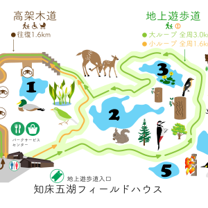 知床五湖は、大ループを選択して大満足。
